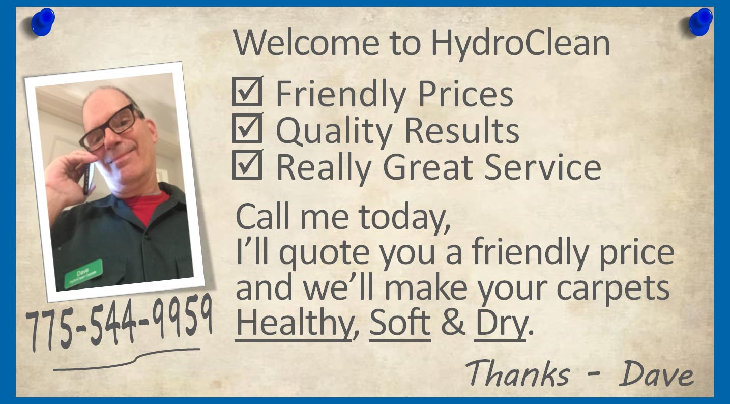 Your Carpets Can be Clean And Dry This Week. Schedule Today or Book Online